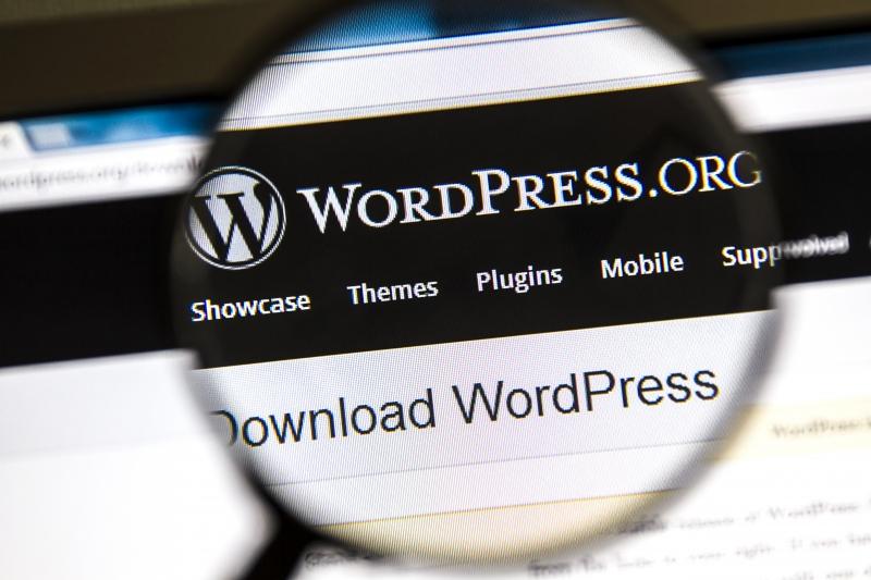 9362356-wordpress-website